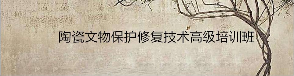 陶瓷文物保护修复技术高级培训班(2019)